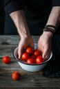 Washing tomatoes. Male chef washing tomatoes. Tomatoes in hands Royalty Free Stock Photo