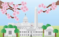 Washington DC Landmarks with Cherry Blossom Royalty Free Stock Photo