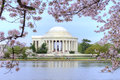 Washington dc thomas jefferson memorial framed with beautiful cherry blossoms and potomac river tidal basin Stock Image