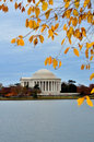 Washington DC - Thomas- Jeffersondenkmal in Autum Stockfoto