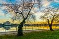Washington, DC at the Tidal Basin and Jefferson Memorial Royalty Free Stock Photo