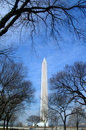The Washington monument Royalty Free Stock Images
