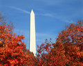 Washington Monument in Fall Stock Photo