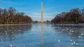Washington monument reflection in a frozen reflecting pool the the Stock Photography