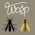 wasp vector illustration style Flat black silhouette