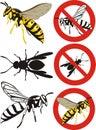 Wasp - warning signs Royalty Free Stock Photo