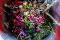 Waste bin full of garden clippings Royalty Free Stock Photo