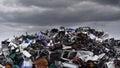 Photo : Waste  sorted doggy