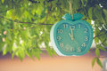 Waste of Time Concept : Alarm clock hanging on green branches tree.