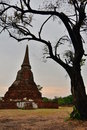 Wat Mahathat. Ayutthaya. Thailand Royalty Free Stock Photo