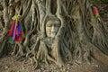 Wat Mahathat Buddha head in tree, Ayutthaya Royalty Free Stock Photo
