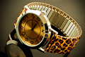 Watch with animal print strap closeup of ladies reflecting on dark background Stock Photography