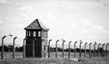 Watch tower auschwitz birkenau concentration camp Stock Images