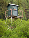 Watch tower in deep forest summer view of hidden behind green plants with coniferous background Stock Photography