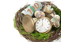 Watches money and eggs in a nest on white background business concept Stock Photos