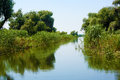 Water alley in danube delta Stock Photography