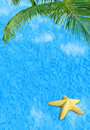 Water background with starfish Royalty Free Stock Image