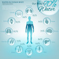 Water in Body