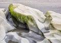 Water Carved Rocks