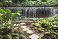 Water cascade stone steps pathway leading to the artificial in singapore botanical garden Royalty Free Stock Photos