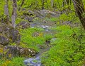 Water cascades over rocks and boulders in the Smokies. Royalty Free Stock Photo