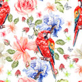 Water color pattern with flowers roses, iris, hibiscus, leaves and berries and a parrot. Royalty Free Stock Photo