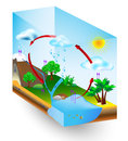 Water cycle nature vector diagram condensation evaporation and environment Stock Photos