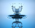 Water drop close up. Water sculpture. Royalty Free Stock Photo
