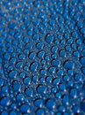 Water droplets on Blue Plate Stock Photo