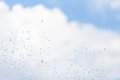 Water drops in the air on the sky. Royalty Free Stock Photo