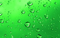 Water drops close up of over inensive green background Stock Image