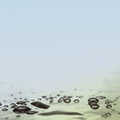 Water drops. copy space. abstraction Royalty Free Stock Photo