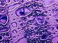 Agua gotas en vidrio