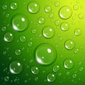 Water drops on green Stock Photo