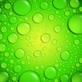 Water drops on green surface Royalty Free Stock Photo