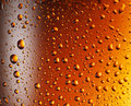 Water drops over beer glass. Royalty Free Stock Photo