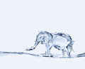 Water elephant an made of spraying Stock Photography