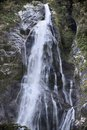 Water fall in the Milford Sound Royalty Free Stock Photo