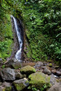 Water fall in the tropical forest Stock Image