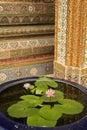 Water flowers grand palace bangkok Royalty Free Stock Photography