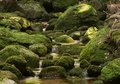 Water flowing over rounded stones jedlova czech republic green covered with moss in small mountain river Royalty Free Stock Images