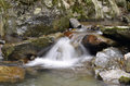 Water flowing in a stream an sant joan de toran valle de aran lleida catalonia spain Stock Images