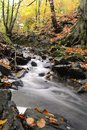 Water flowing through woods beautiful wild stream rural northwestern english in wigan england Stock Images