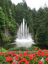 Water Fountain with Red Flowers in the Foreground Royalty Free Stock Images