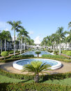 Water fountain at a tropical resort the foutain is surrounded by lush vegetation and palm trees Stock Image
