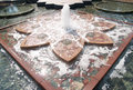 Water fountain and waterscape in washington dc outdoor architecture small with flower design Royalty Free Stock Photos