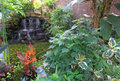 Water garden with fall rock and tropical plants Stock Photos