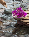 Water hydration and beauty concept flower stone wood elements for spa atmosphere Royalty Free Stock Image