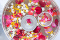Water with jasmine and roses corolla in bowl for songkran festival in thailand Stock Photos