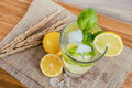 Water with lemon and basil Royalty Free Stock Photo